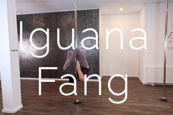 Iguana Fang