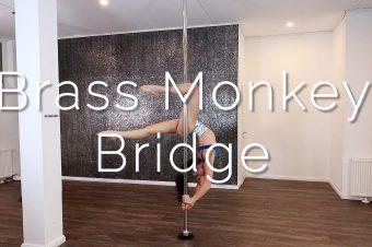 Brass Monkey Bridge